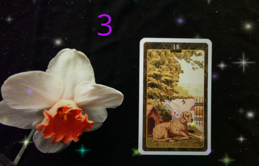 pes lenormand